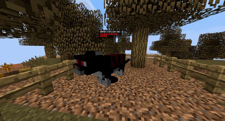 Ender Zoo Mod Cat