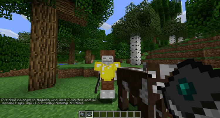 Souls Mod for Minecraft 2