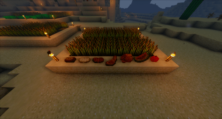 Placeable Items Mod for Minecraft 4