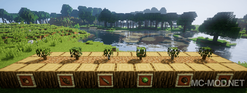 Dynamic Trees mod for minecraft 01