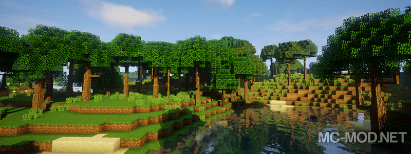 Dynamic Trees mod for minecraft 03