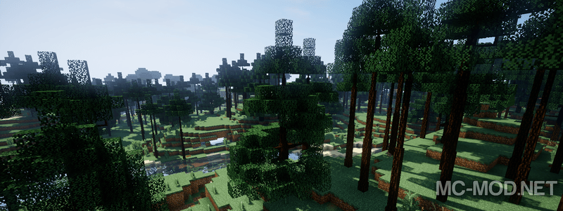 Dynamic Trees mod for minecraft 04
