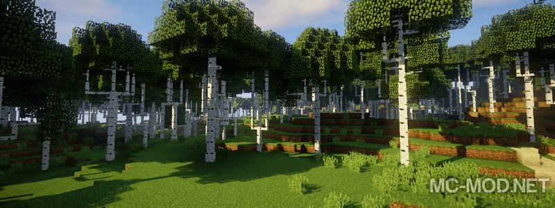 Dynamic Trees mod for minecraft 05