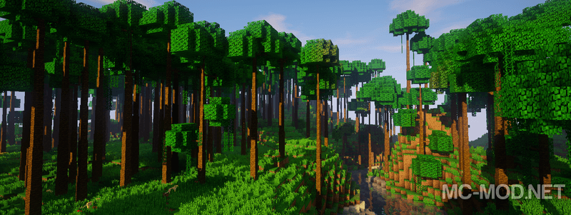 Dynamic Trees mod for minecraft 06