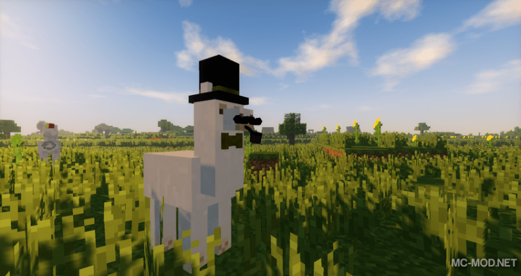 Better than llamas mod for minecraft 02
