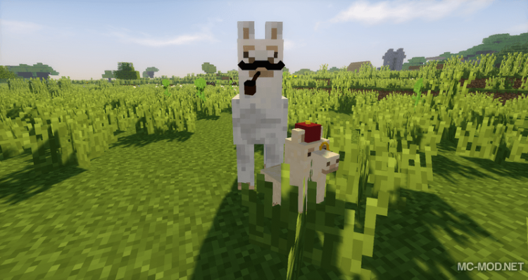 Better than llamas mod for minecraft 06
