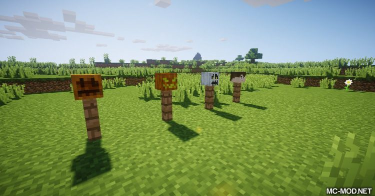 MCDecorations mod for Minecraft 01