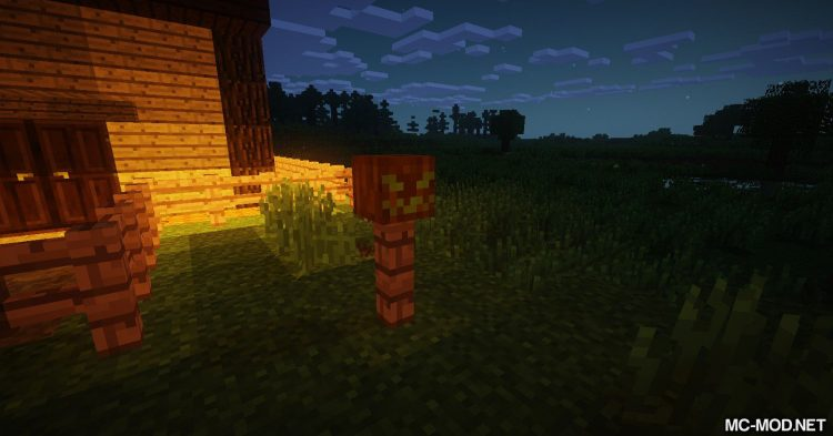 MCDecorations mod for Minecraft 02