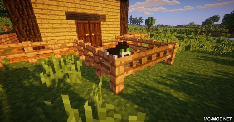 MCDecorations mod for Minecraft 11