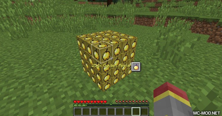 Stackable mod for Minecraft (6)