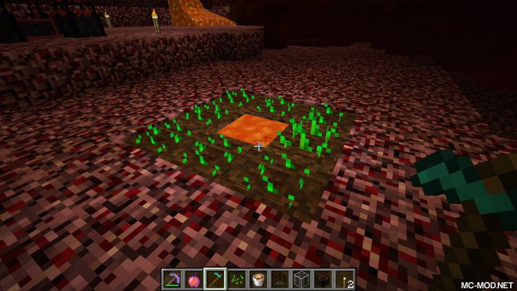 Nether Utils mod for minecraft 04