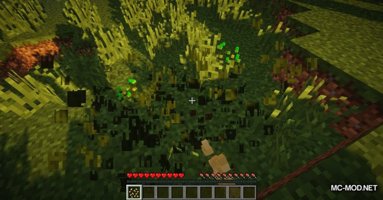 Simple Flax mod for Minecraft (1)