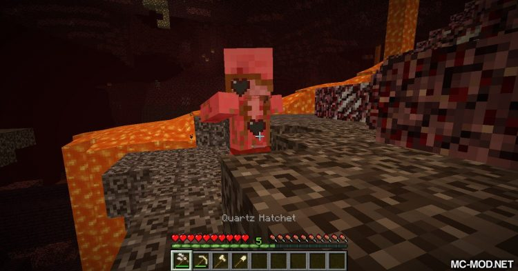 Survival Addtions mod for Minecraft (21)