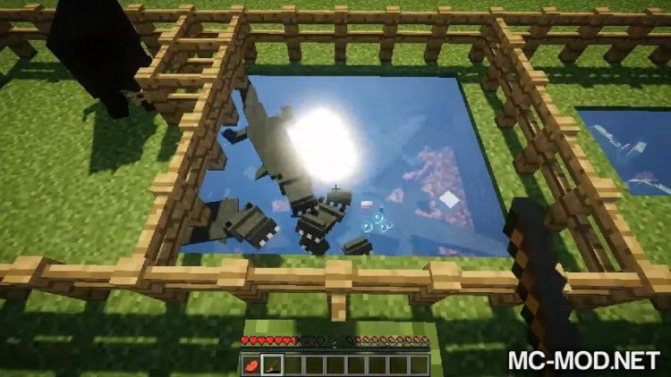 The Fauna Amplification mod for minecraft 07