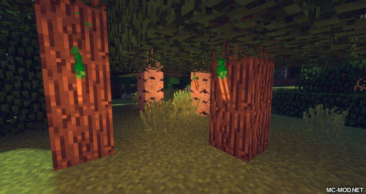 itorch mod for minecraft 02