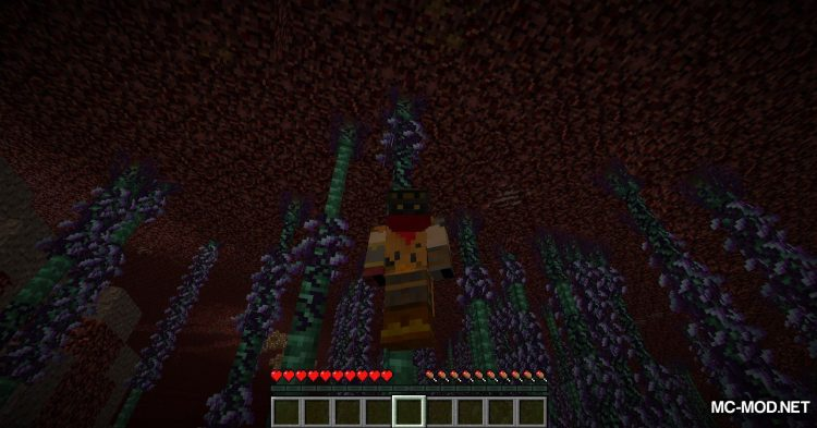 BetterNether mod for Minecraft (10)