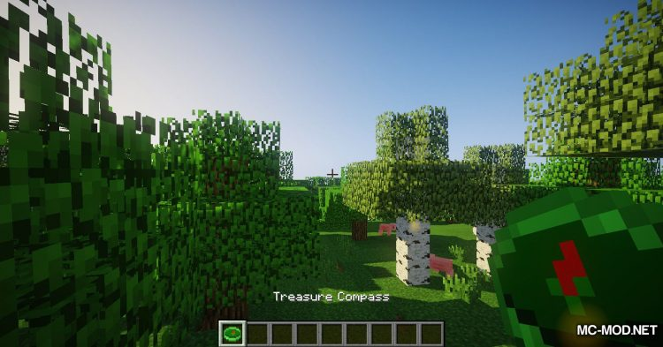Ced_s Treasure Hunting mod for Minecraft (3)