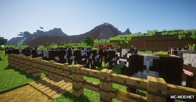 Chest Cow mod for Minecraft (1)