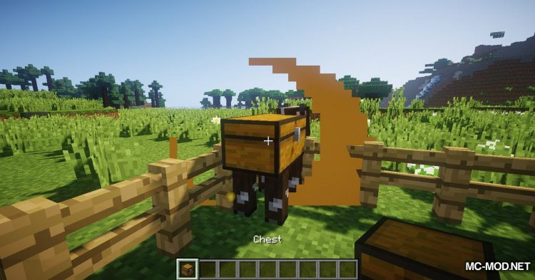 Chest Cow mod for Minecraft (3)