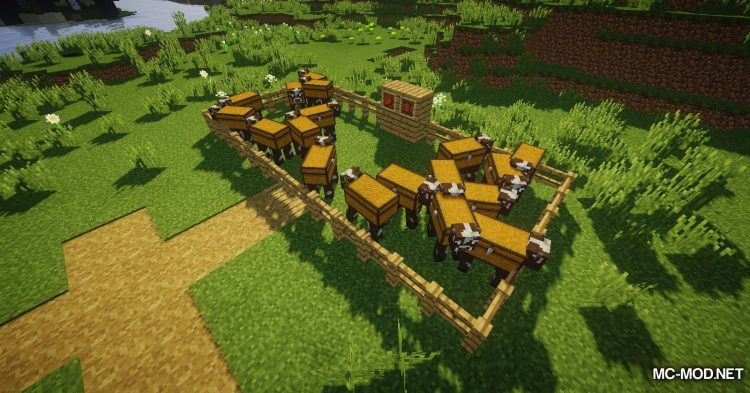 Chest Cow mod for Minecraft (5)