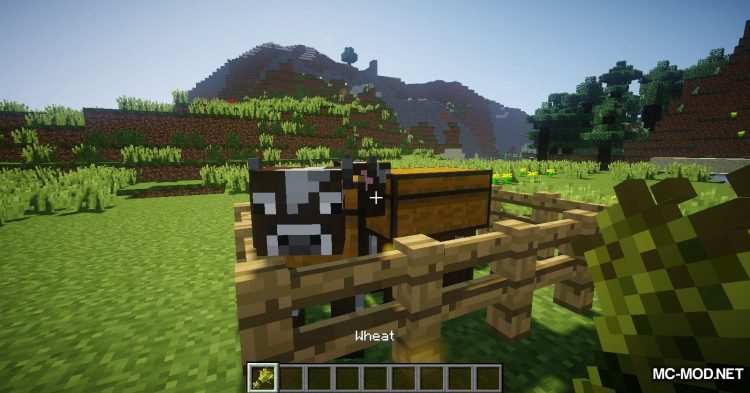 Chest Cow mod for Minecraft (8)
