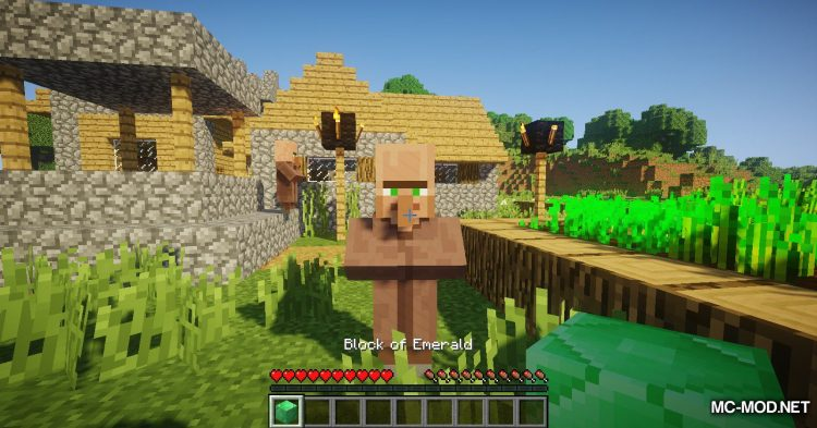Following Villagers mod for Minecraft (4)