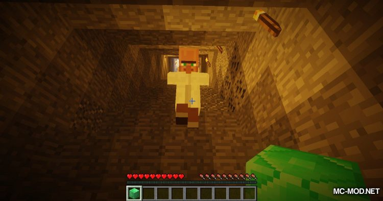 Following Villagers mod for Minecraft (8)