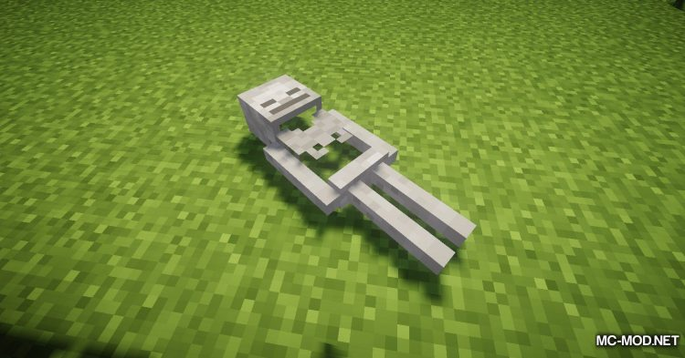 Corpse mod for Minecraft (14)