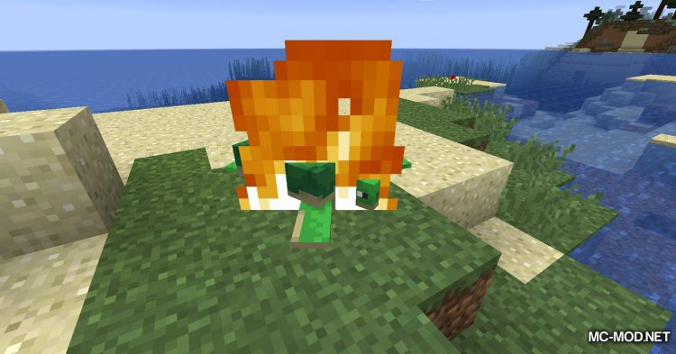 Turtle Shell Drop mod for Minecraft (11)