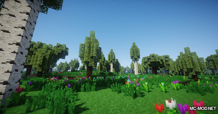 Oh The Biomes You_ll Go mod for Minecraft (21)