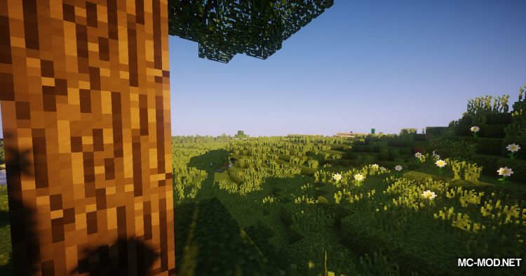 Environs++ mod for Minecraft (2)