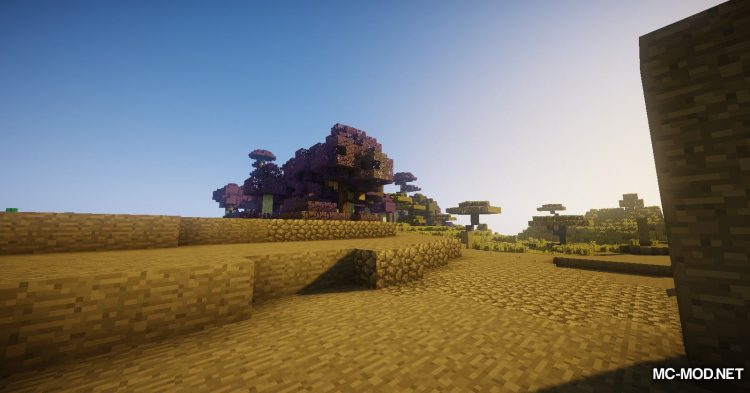 Environs++ mod for Minecraft (4)