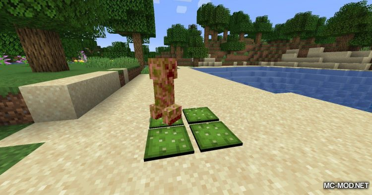 Extra Pressure Plates mod for Minecraft (10)