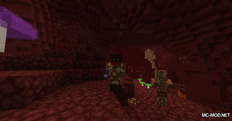 Nether Things mod for Minecraft (16)