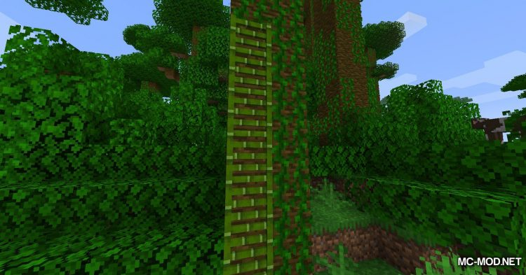Bamboo Ladders mod for Minecraft (10)