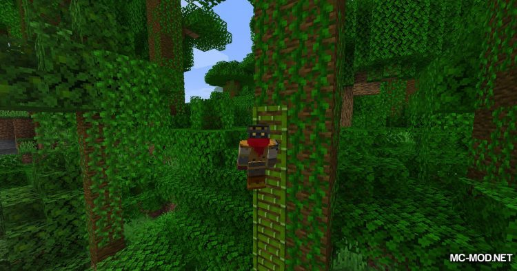 Bamboo Ladders mod for Minecraft (11)