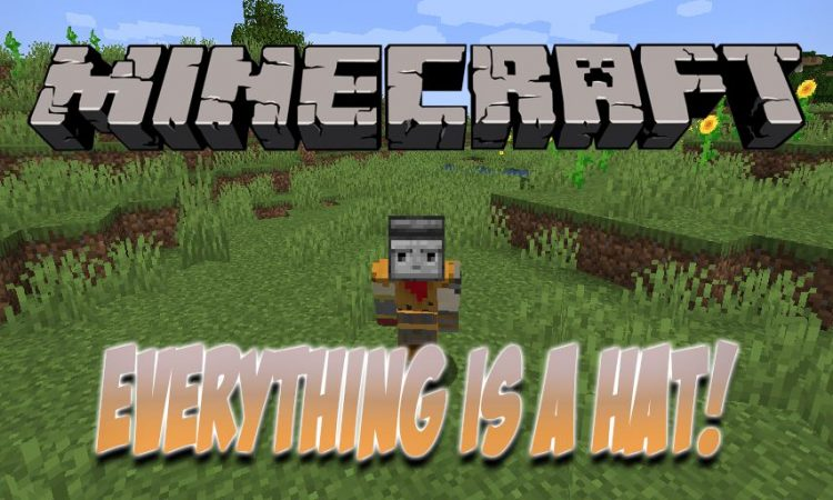 Everything is a Hat mod for Minecraft logo