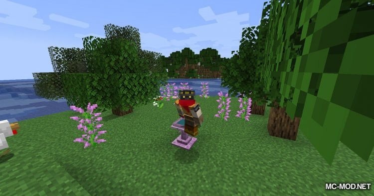 Fancy Fountain Passage mod for Minecraft (9)