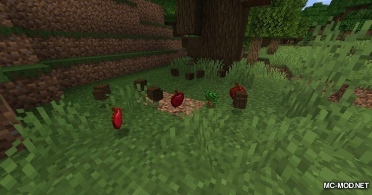 Leaf Decay mod for Minecraft (11)