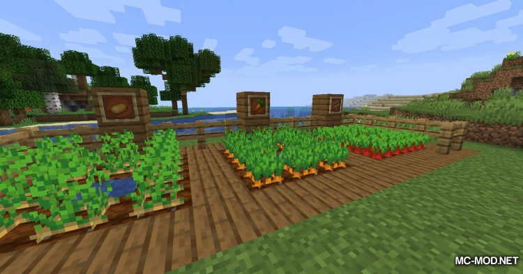Quick Crops mod for Minecraft (10)