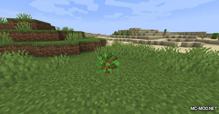 Quick Crops mod for Minecraft (11)