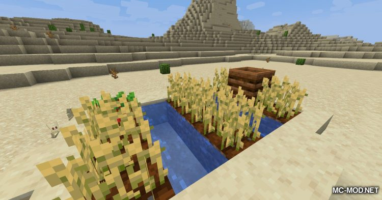 Quick Crops mod for Minecraft (8)