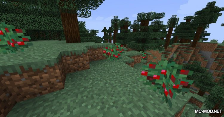 Sneak Through Berries mod for Minecraft (3)