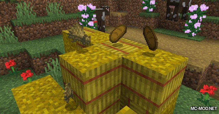 Hunger Remover mod for Minecraft (11)