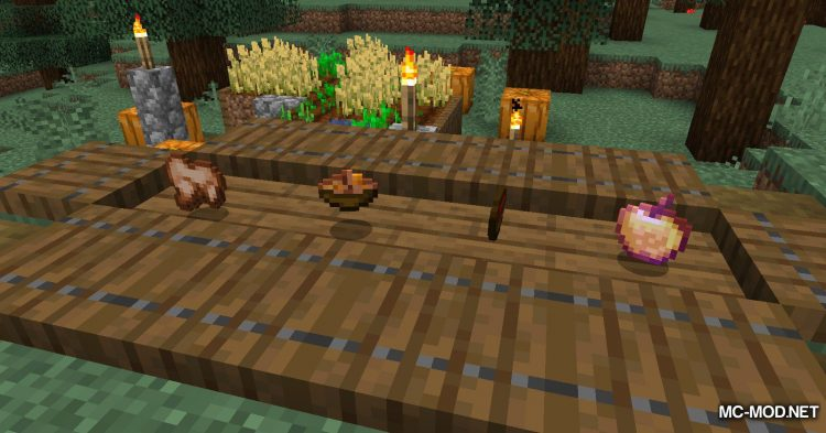 Hunger Remover mod for Minecraft (9)