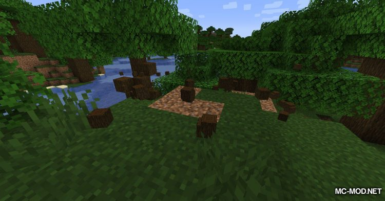Materialisation mod for Minecraft (18)