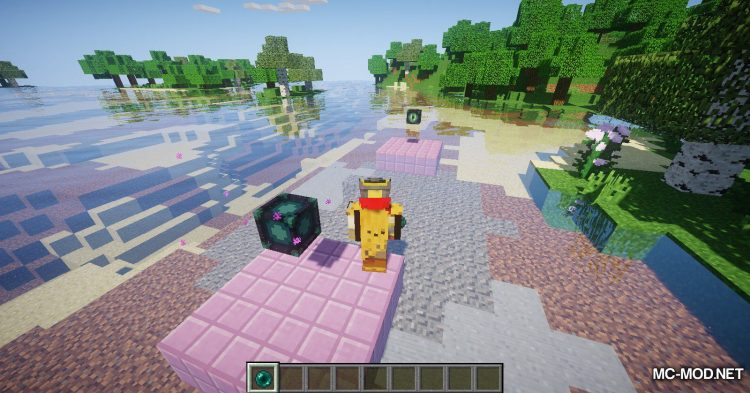 End Teleporters mod for Minecraft (8)