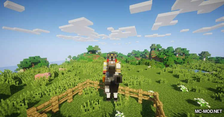 The Narrow Gate mod for Minecraft (8)