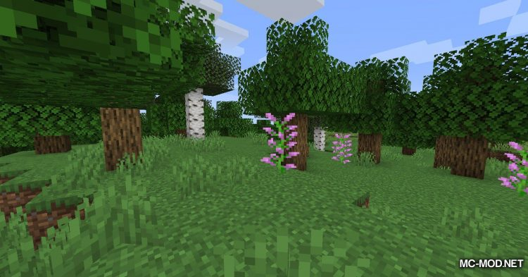 Curio of Undying mod for Minecraft (2)