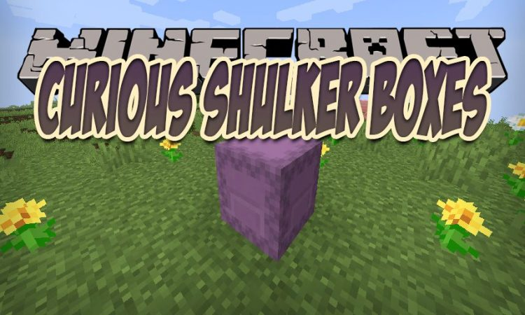 Curious Shulker Boxes mod for Minecraft logo